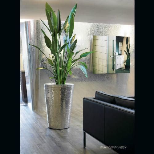 Chris bloemsierkunst amsterdam bloemen bloemwerk voor for Interieur beplanting